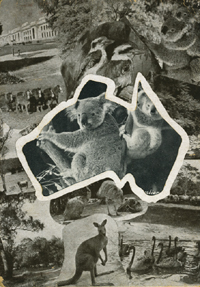 Views of Australia; die cut outline of Australia with changeable images. Photographic greeting card.