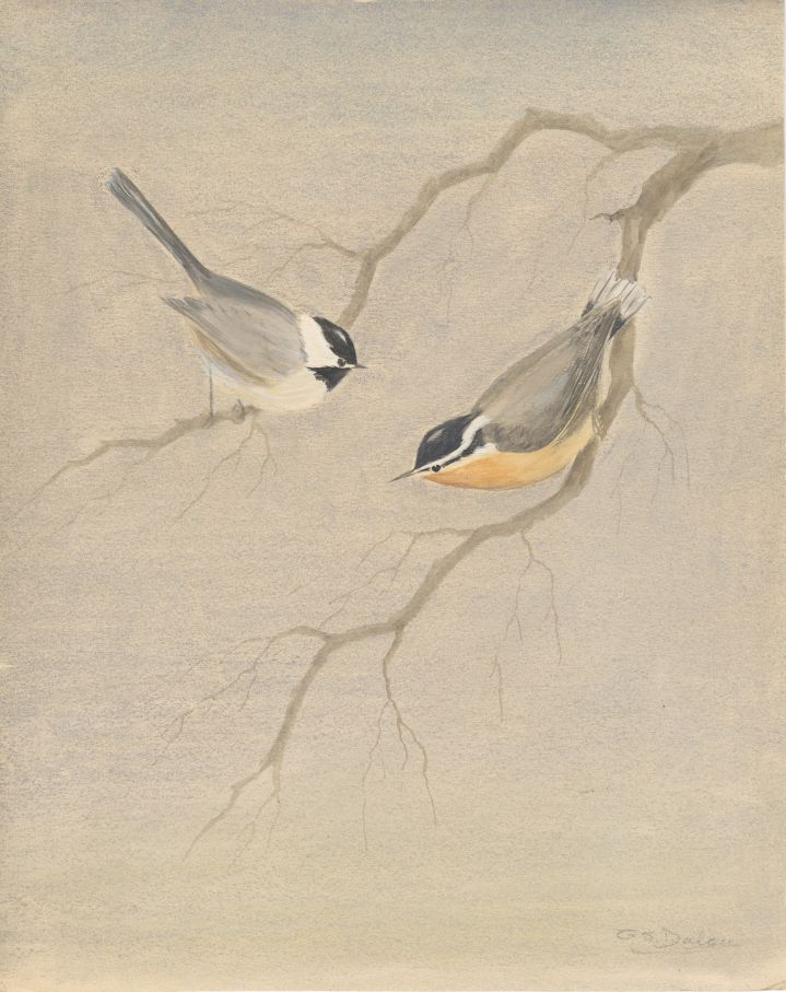 Signed Watercolor of Two Birds on Branches. G. S. Dalen.