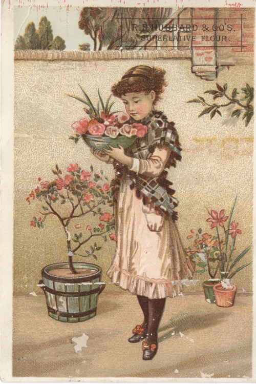 Advertising Card for R.D. Hubbard Superlative Flour.