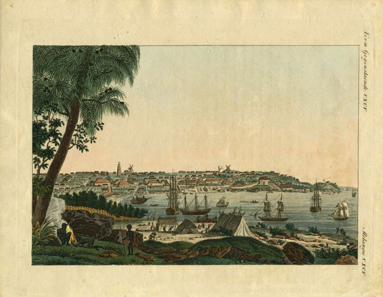 [View of Sydney and the Mouth of the Parramatta]. Victor Pillement, after.
