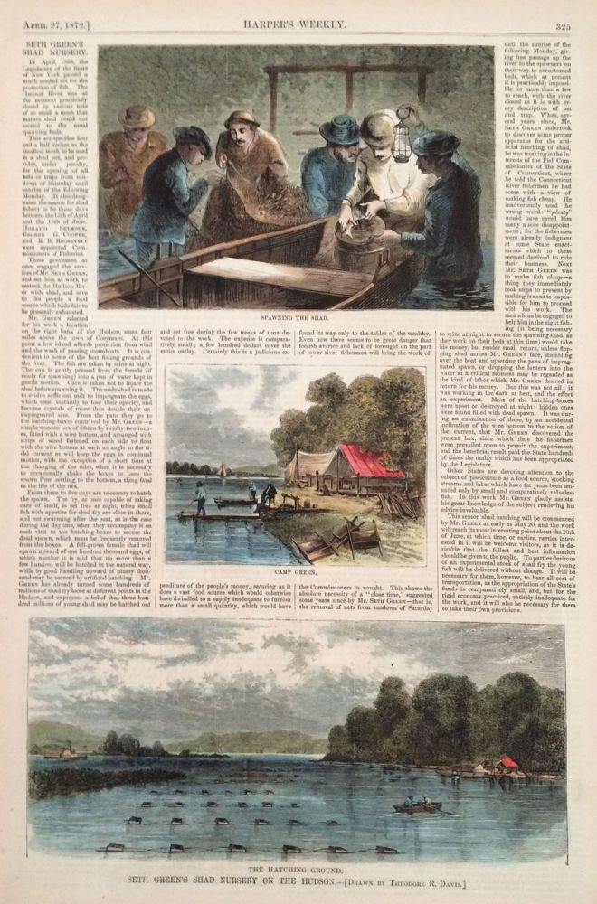 Seth Green's Shad Nursery on the Hudson, illustration from Harper's Weekly, full page. Theodore R. Davis.