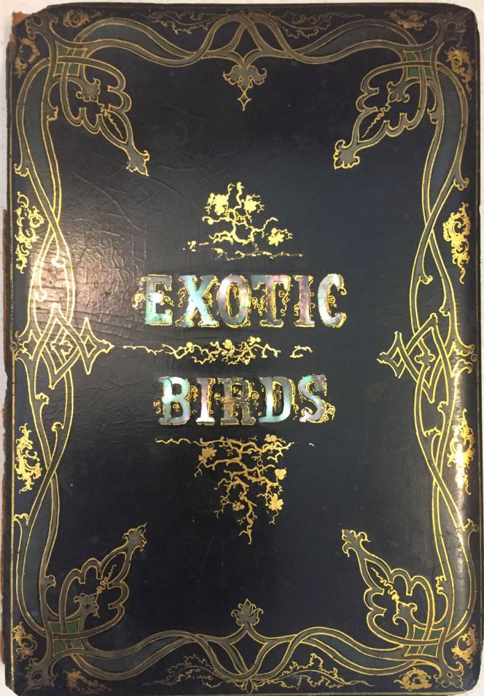 The Book of Exotic Birds. A series or Richly Colored (sic) Plates Accompanied by Descriptions. Paul Jerrard.