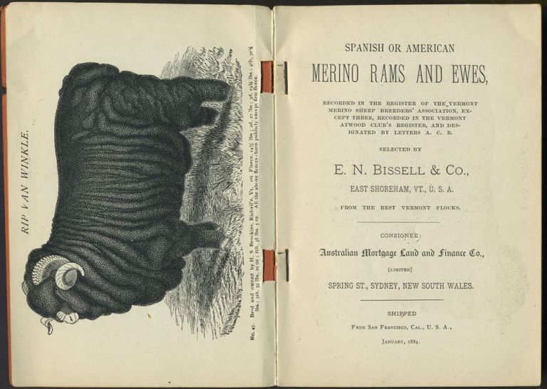 Spanish or American Merino Rams and Ewes ... Selected by E. N. Bissell & Co. ... from the Best Vermont Flocks. Catalog. E. N. Bissell.