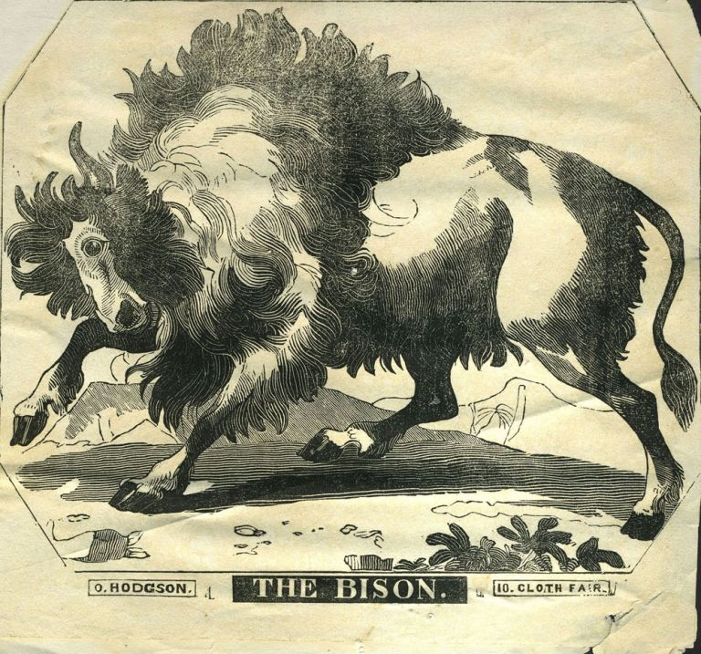 The Bison. Woodblock advertising. O. Hodgson.