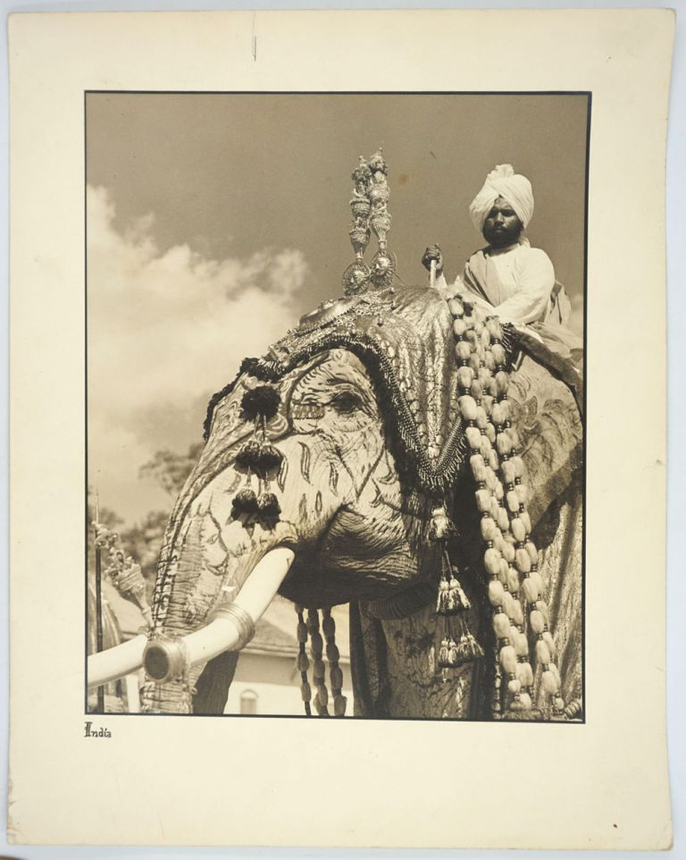 Maharaja Elephants in Ceremonial Dress. 3 Silver gelatin photographs. India, Photography.