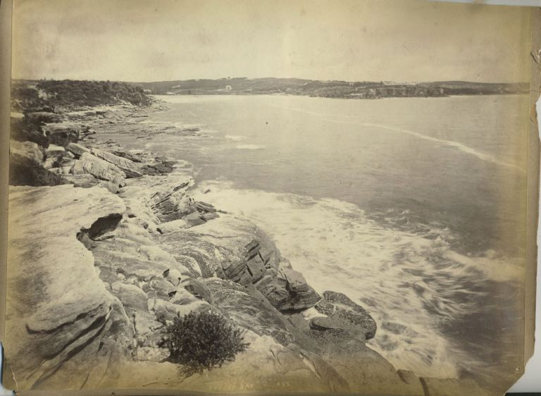"""Coogee Bay' and ""Palms Botanic Garden"" verso with ""Philae Island, Egypt"". Albumen photographs. Charles Bayliss."