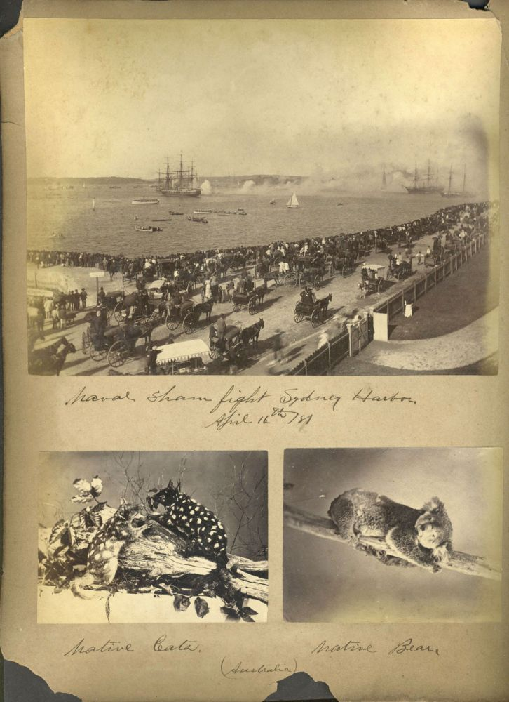 """""""Naval Sham Fight"""" Sydney Harbour, one of 5 photos in and around Sydney: with International Exhibition Building after the fire, and native animals. New South Wales, Photography."""