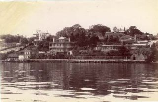 Photograph. View of Darling Point, Sydney Harbour