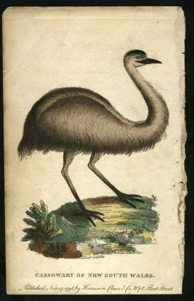 Cassowary of New South Wales. After George Barrington