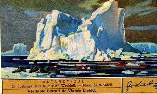 "Set of 6 cards entitled ""L'Antarctique"" Antarctic, Liebig Advertising cards"