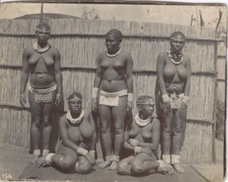 Photograph of the Wives and Daughters of a Zulu
