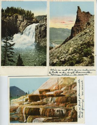 Five Souvenir Postcards from Yellowstone National Park, Wyoming
