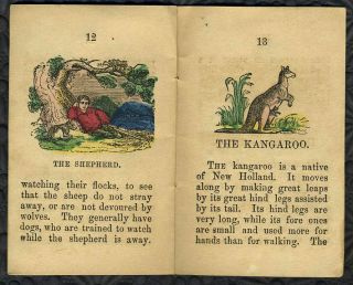 The Sailor Boy and Other Stories. Chapbook with kangaroo content.