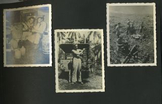 """""""Trophy Taking"""": Photographic album of US in the Pacific theater, World War II."""
