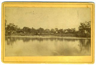Boomanoomana Station from across the Murray River [with] American Merino Rams pedigree of sheep by W. G. Markham, purchased by Alfred Hay of Boomanoomana in 1883. W. G. Markham.