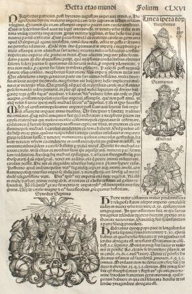 Liber chronicarum- Nuremberg Chronicle, an individual page from the Chronicle featuring...