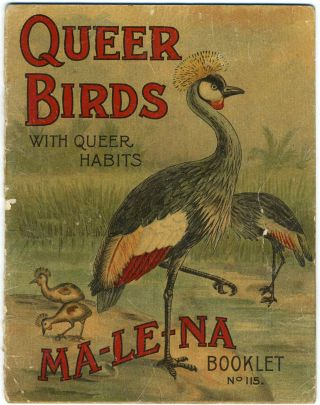 Queer Birds with Queer Habits. Ma-le-na Booklet No. 115. Childrens; Cassowary.