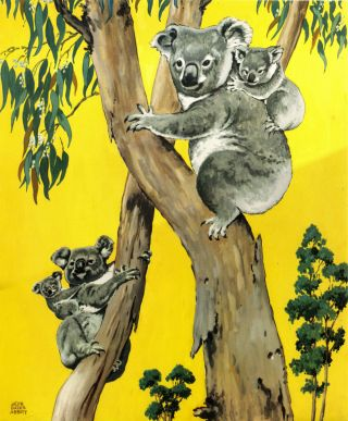 """Animal Babies"". 12 color plates including koala and platypus. Children's, Education"