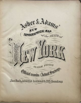 New Topographical Map of the State of New York Made from Official Records and Actual Surveys. Asher, Adams.