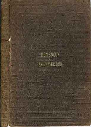Home Book of Natural History Illustrated with One Hundred Engravings. Childrens, kangaroo.