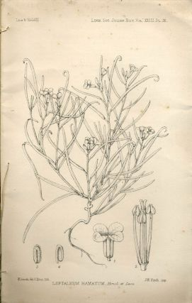 Report on Antarctic plants to Sir Joseph Hooker, in The Journal of the Linnean Society, Botany...