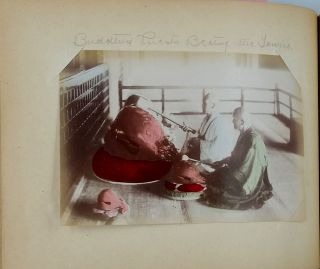 Photograph Album of images of Japan.