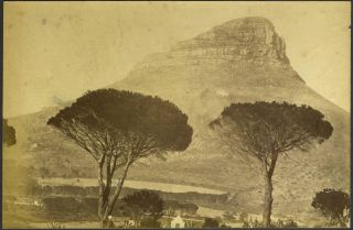 Lion's Head Mountain, Cape Town, South Africa. Albumen photograph