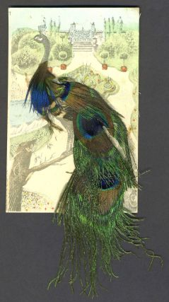 Peacock postcard decorated with real feathers