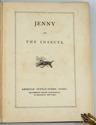 Jenny and the Insects.