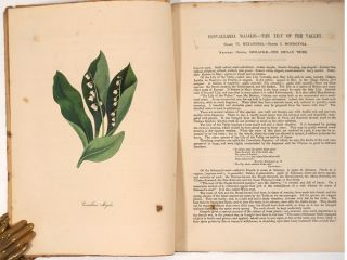 Plantae Utiliores; or Illustrations of Useful Plants, Employed in the Arts and Medicine.