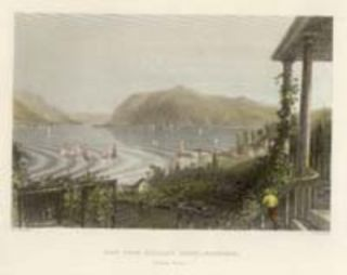 View from Ruggle's House, Newburgh. W. H. Bartlett, sc R. Brandard