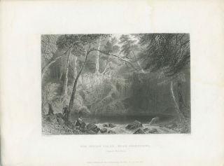 The Indian Falls Near Cold Spring. (Opposite West Point). W. H. Bartlett, sc H. Adlard